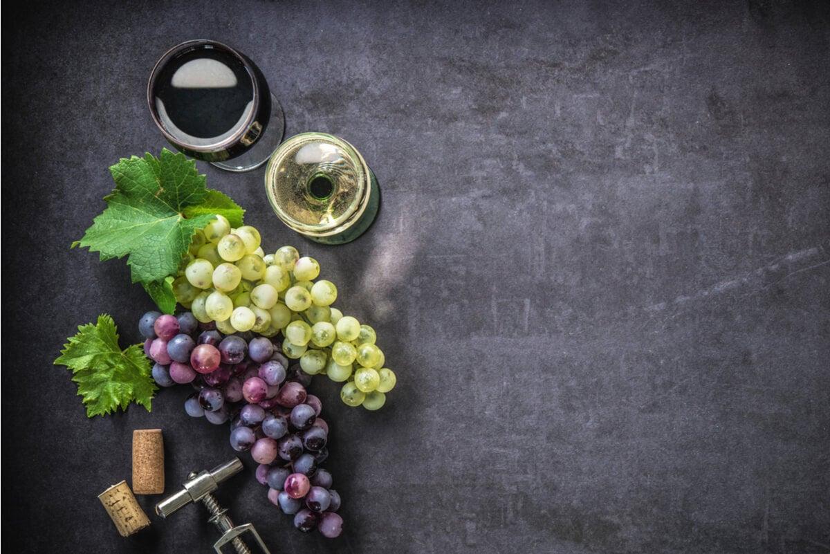 Uvas para la elaboración de vino.