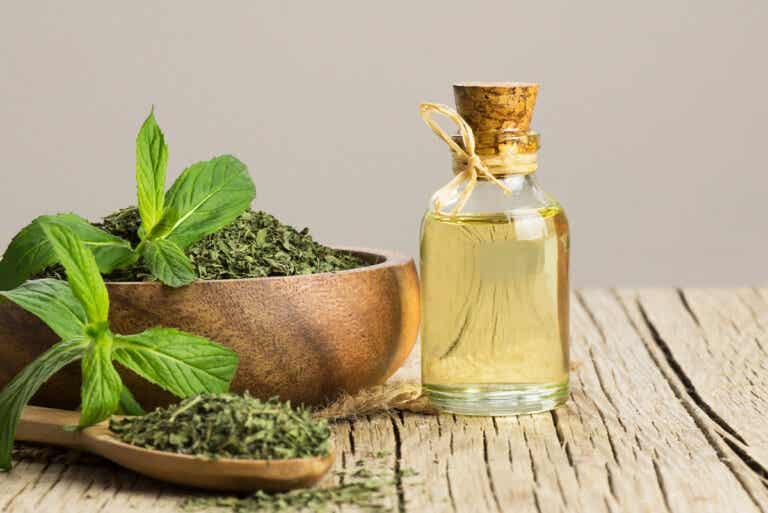 ¿El aceite de menta ayuda contra el síndrome del intestino irritable?