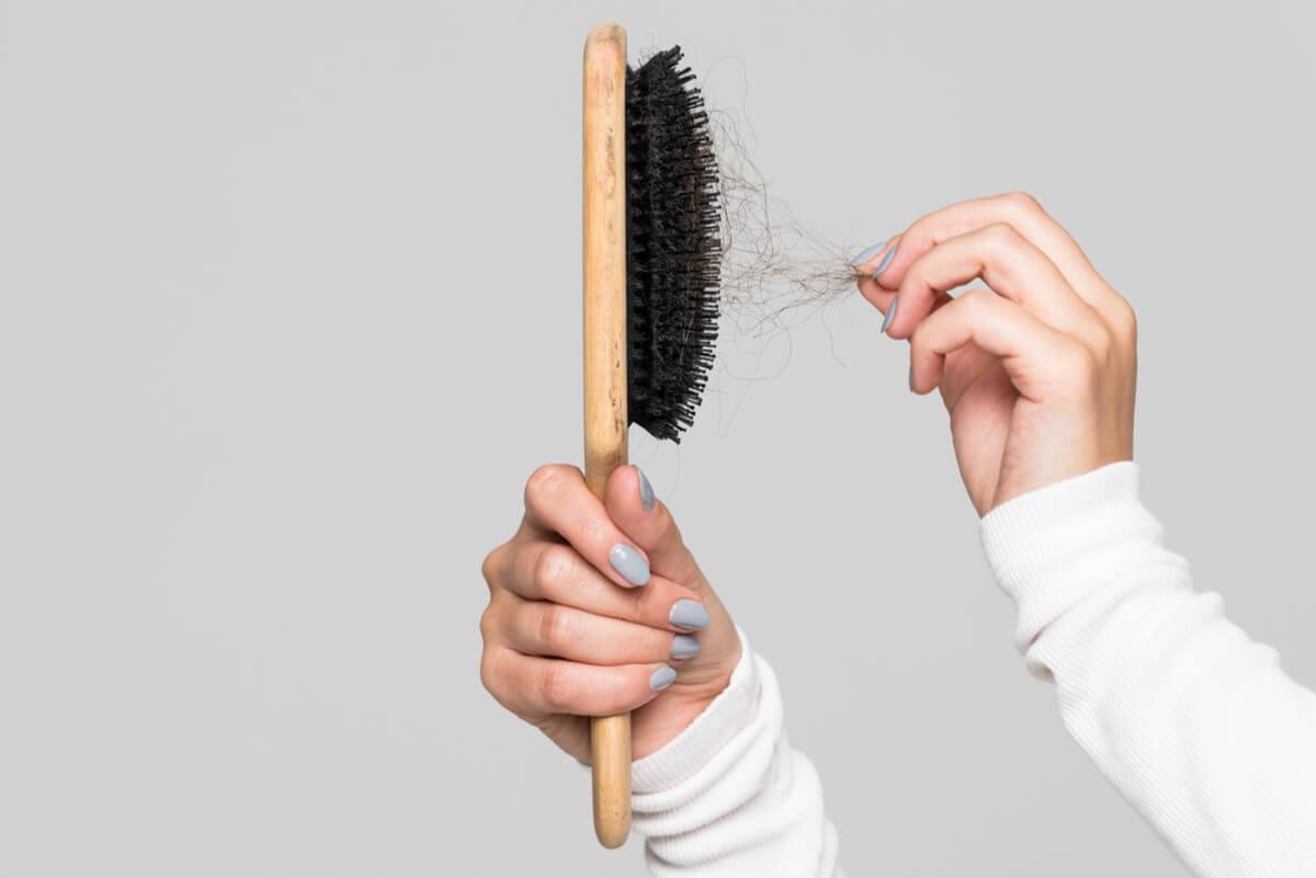 Pelo en el cepillo de cabellos.
