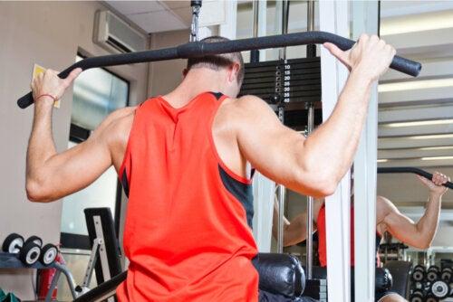 Deltoides posterior: cómo entrenarlos correctamente