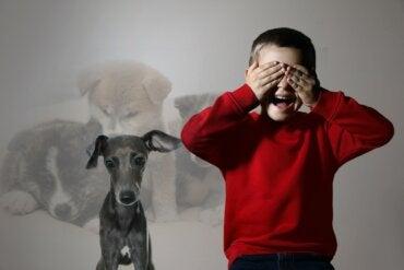 Cinofobia o fobia a los perros: ¿por qué aparece y cómo superarla?
