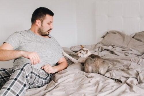 ¿Qué es la enfermedad por arañazo de gato y cómo se detecta?