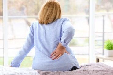 Infusión de rompepiedras: ¿ayuda a disolver los cálculos renales?