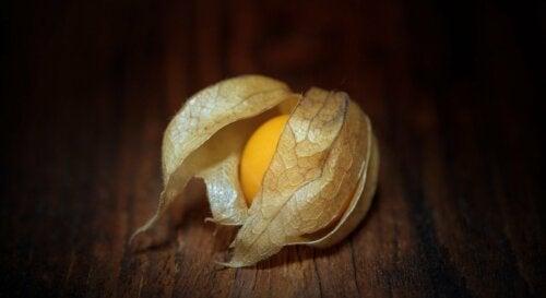 7 beneficios de consumir bayas doradas