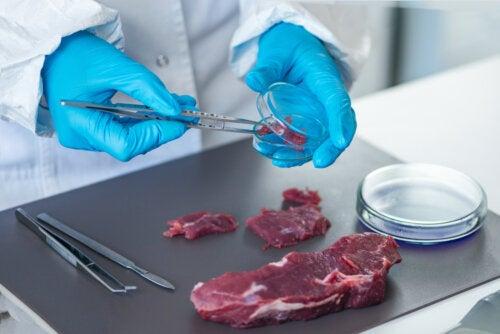 3 bacterias que contaminan la carne