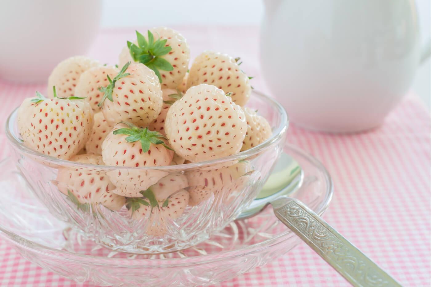Pineberry, frutas exóticas