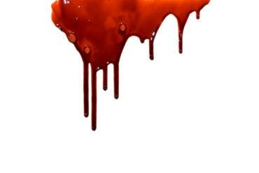 Manchas de sangre en alfombras y muebles: ¿cómo limpiarlas?