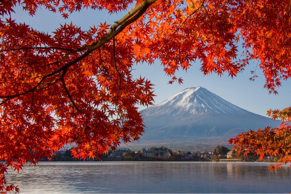 ARce japonés y monte Fuji.