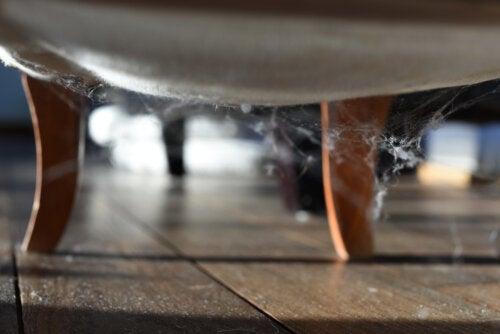 3 trucos para eliminar las telarañas