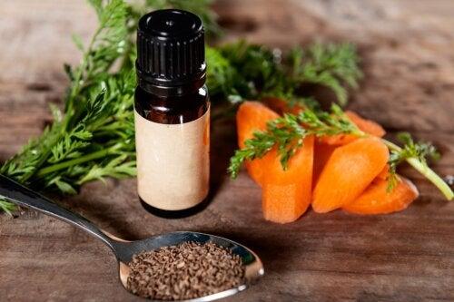 Aceite de semilla de zanahoria: beneficios y usos