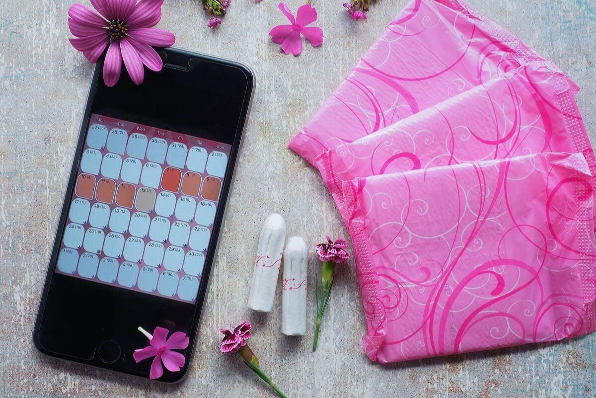 Aplicación para recolectar datos del ciclo menstrual.