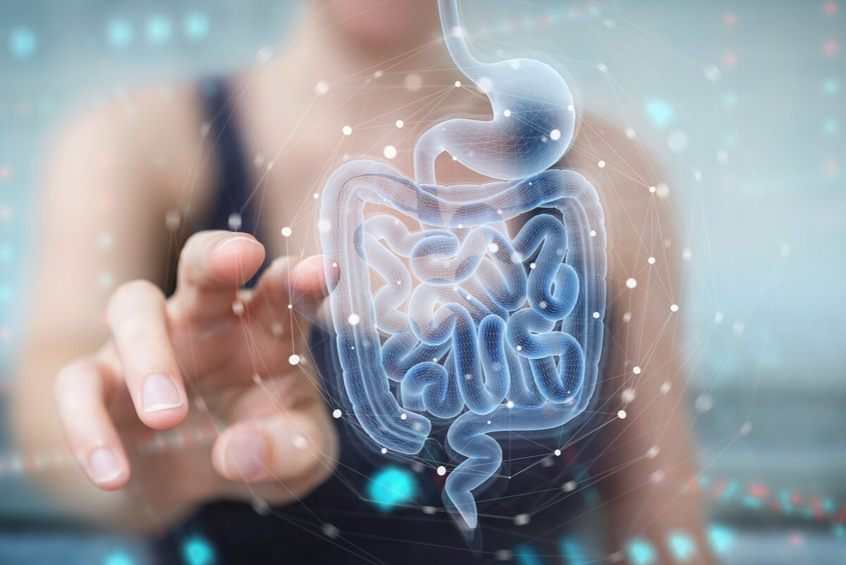 Microbiota intestinal: un objeto de estudio muy interesante.