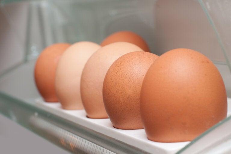 ¿Cómo se pueden congelar los huevos y alargar su vida útil?