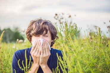 Alergia al césped: causas y tratamiento