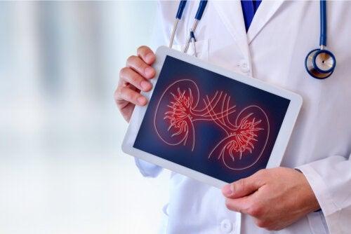 ¿Qué es la uroflujometría y en qué consiste?