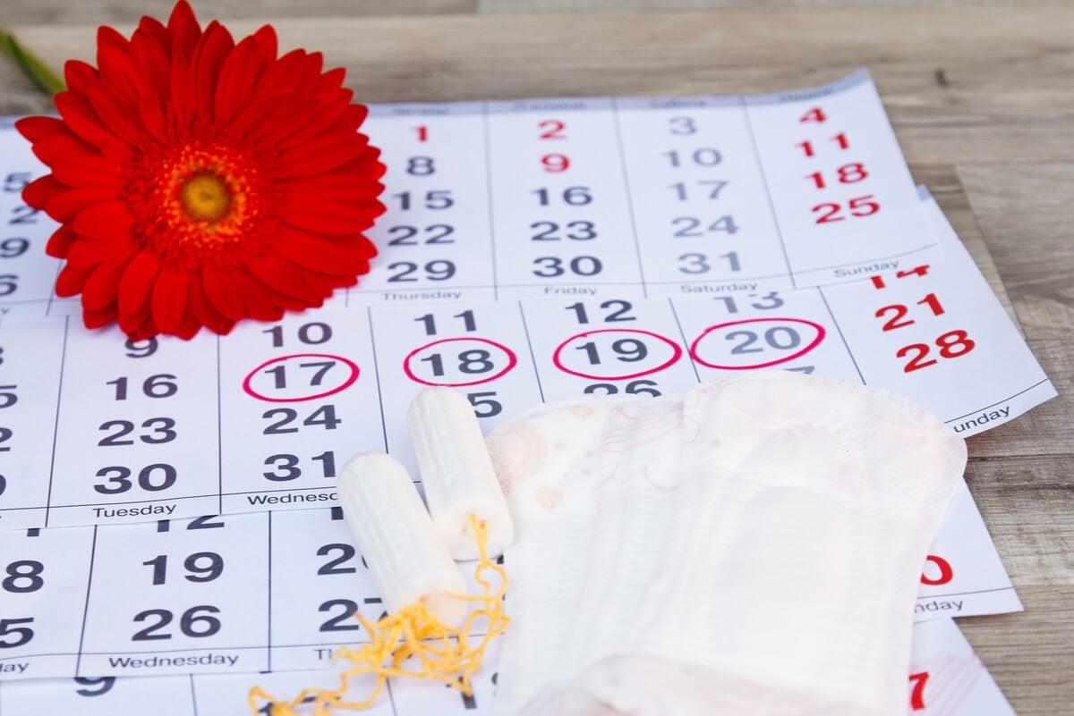 Cómo identificar el periodo fértil a partir del moco cervical.