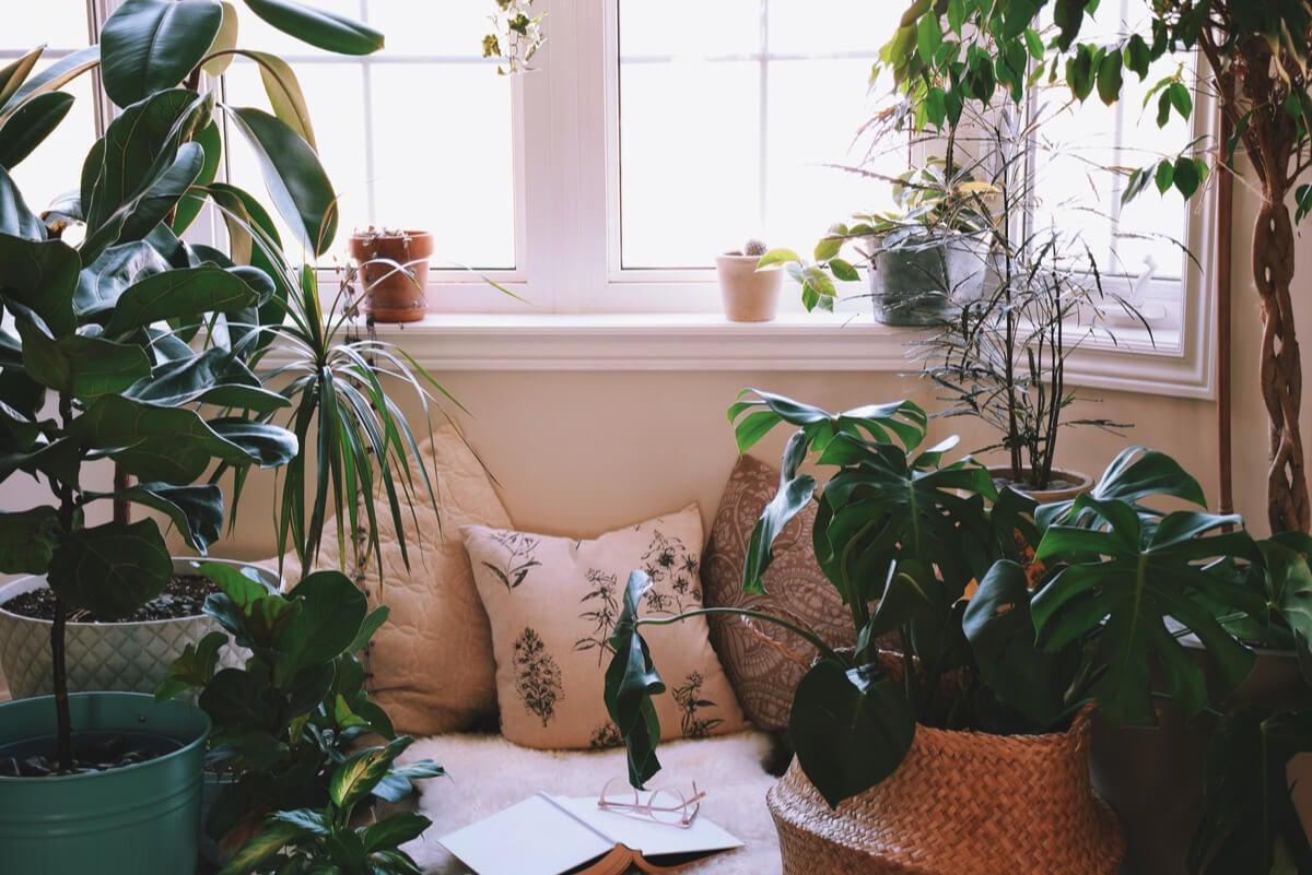 Ideas para crear un rincón relajante en casa