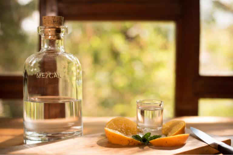 Tequila vs. mezcal: ¿en qué se diferencian?