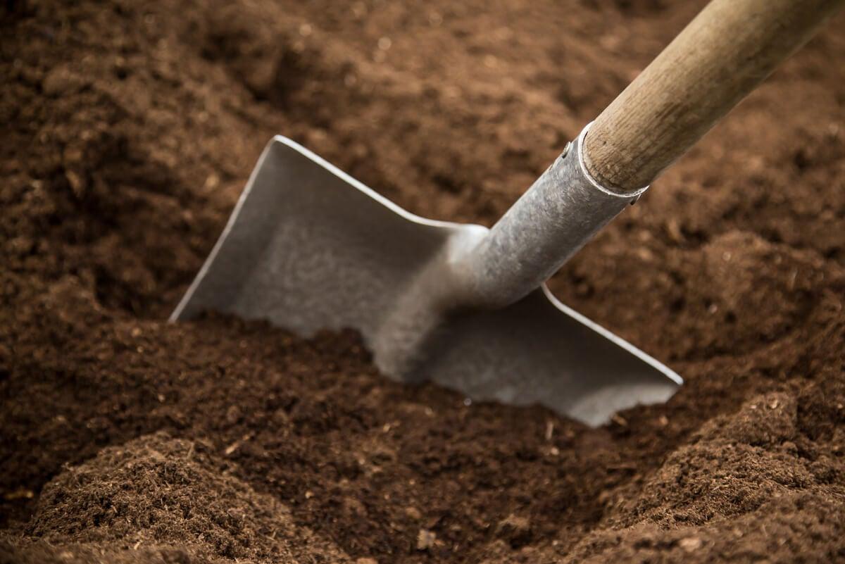 Tipos de suelo para jardín y sus características