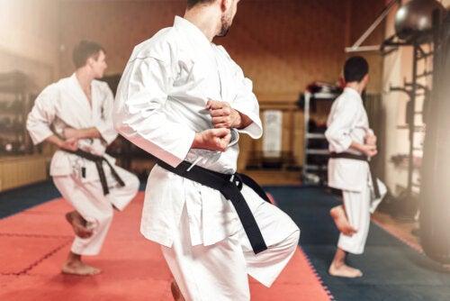 ¿Cuáles son las diferencias entre el karate y el taekwondo?