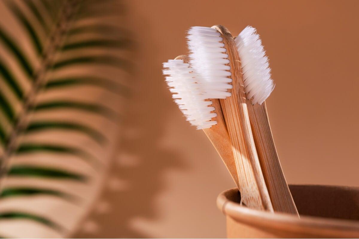 Cepillos de dientes de bambú.