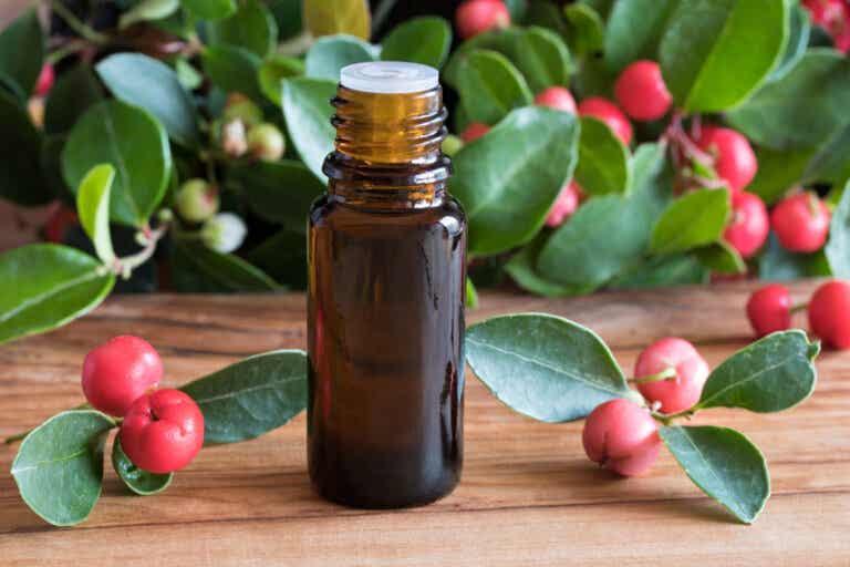 ¿Qué es el aceite esencial de gaulteria y qué usos tiene?