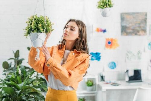 ¿Cómo hacer una maceta colgante casera para tus plantas?