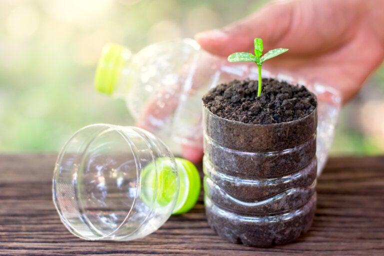 7 increíbles usos de botellas de plástico en jardinería