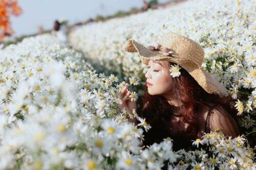 7 plantas con flores aromáticas para perfumar el jardín