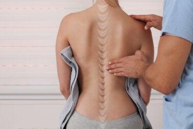 ¿Cuál es la diferencia entre un fisioterapeuta y un quiropráctico?