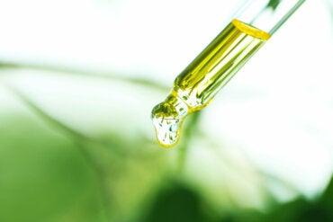 Aceite de copaiba: usos, beneficios y contraindicaciones