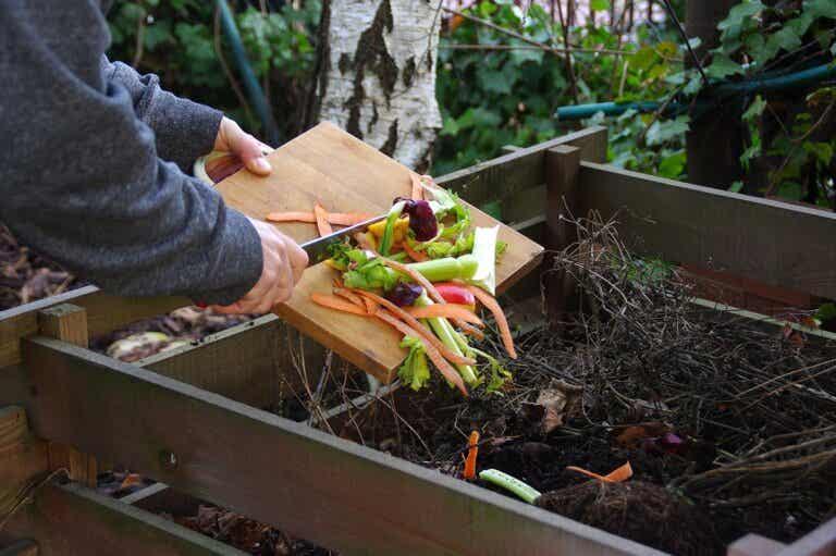 3 errores comunes al hacer un compost casero