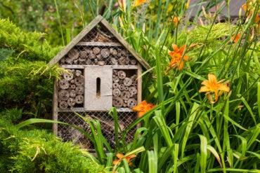 ¿Cómo hacer un hotel para insectos en casa?
