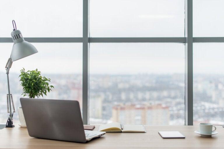 ¿Cómo aumentar la iluminación de tu rincón de trabajo?