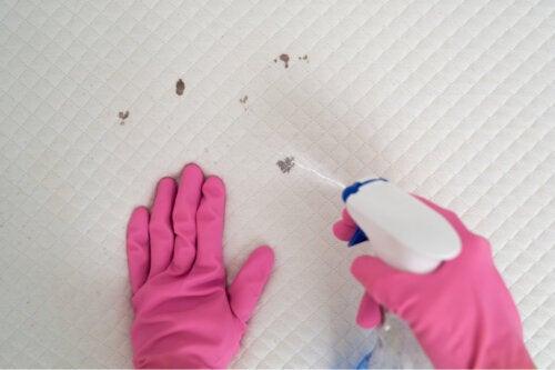 8 mitos sobre la limpieza de colchones y de ropa de cama