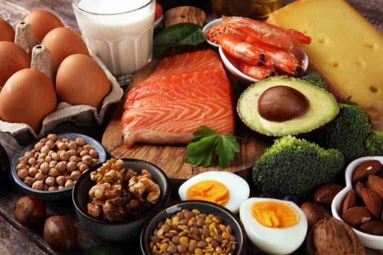 La calidad de la dieta es más importante que el tipo de dieta