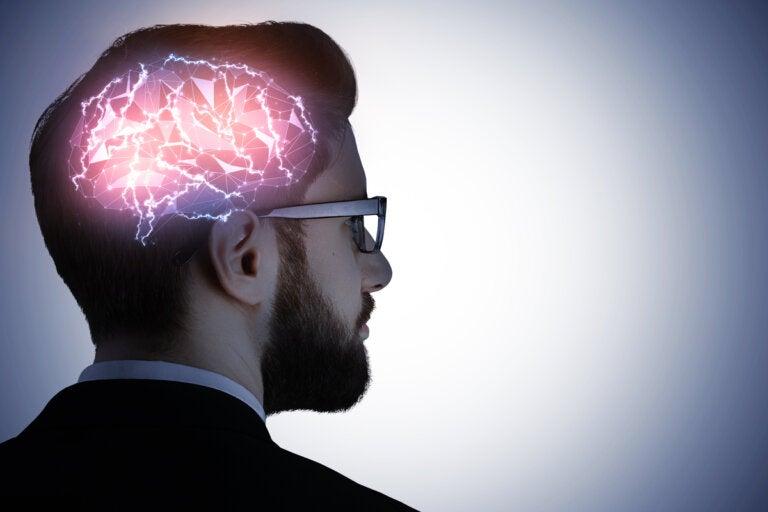 ¿Qué es la codificación predictiva cerebral?