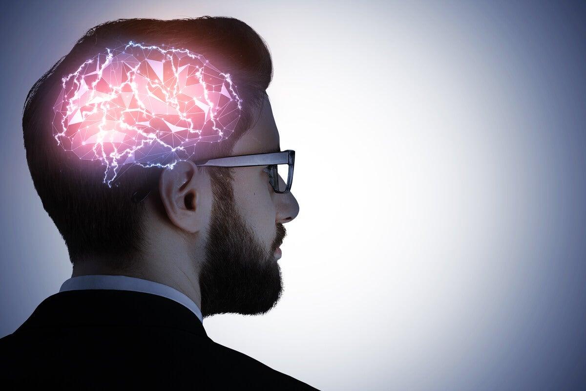 Cerebro humano procesando información para la memoria.