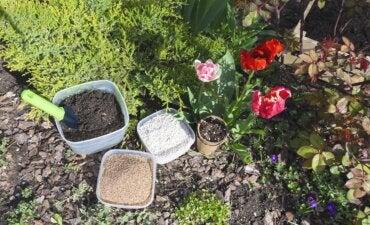 Perlita para plantas: qué es, para qué sirve y cómo se usa