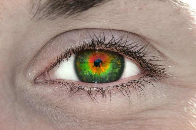 ¿Qué es el tetracromatismo y qué significa?