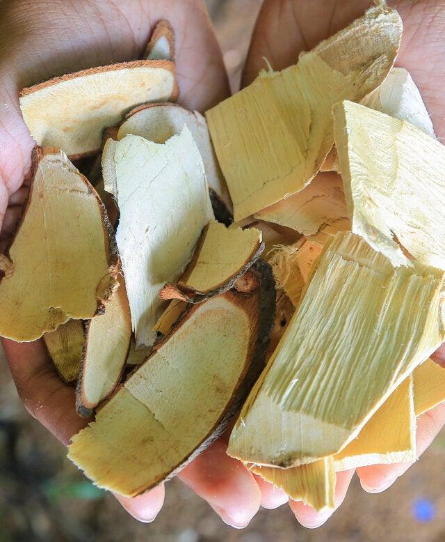 Tongkat ALI LJ100 100 mg, 60 capsule