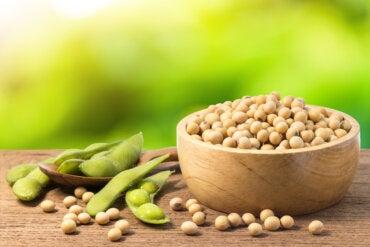 Soja verde: propiedades, usos y beneficios