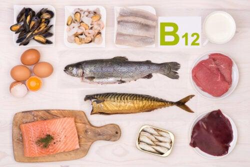 4 alimentos con abundante vitamina B12