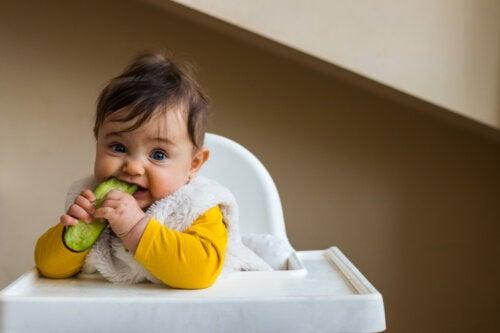 ¿Cuándo y cómo añadir pepino a la dieta del bebé?
