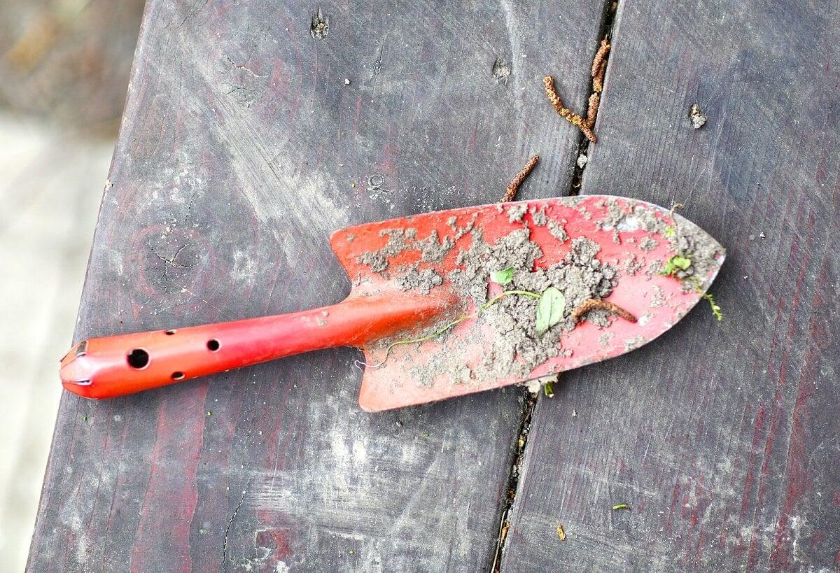 ¿Cómo limpiar las herramientas de jardín oxidadas?