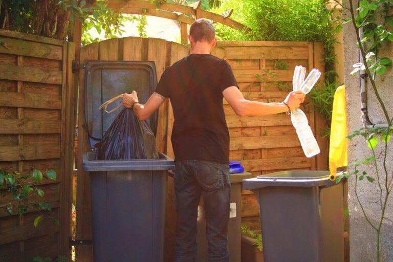 Importancia y beneficios de la separación de residuos