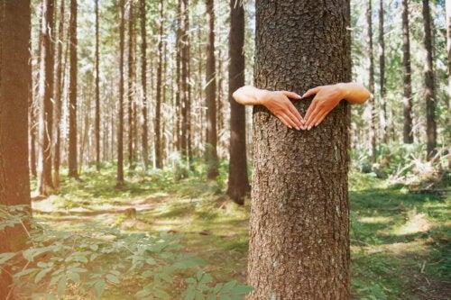 ¿Qué es el movimiento ecosexual y cómo se caracteriza?