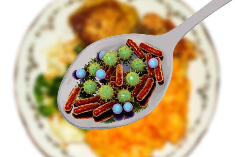 Microorganismos patógenos que pueden estar en nuestros alimentos