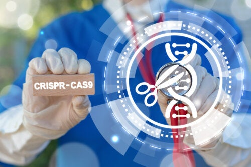 ¿Qué es la técnica CRISPR y cuáles son sus aplicaciones?