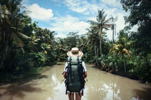 Viajes tropicales: consejos preventivos